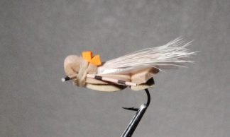 Image of Cicada Tan