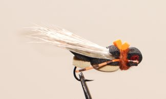Image of Cicada Black/Tan